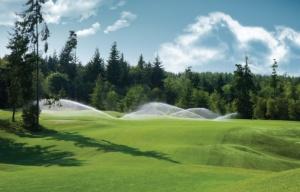 Полив гольф полей